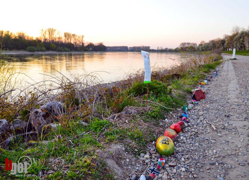 Rhein bei Altlußheim 2020